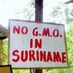 Gezond eten in Suriname doe je op deze plekken (geüpdate!)