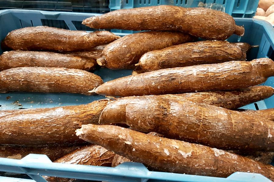 cassave gerechten
