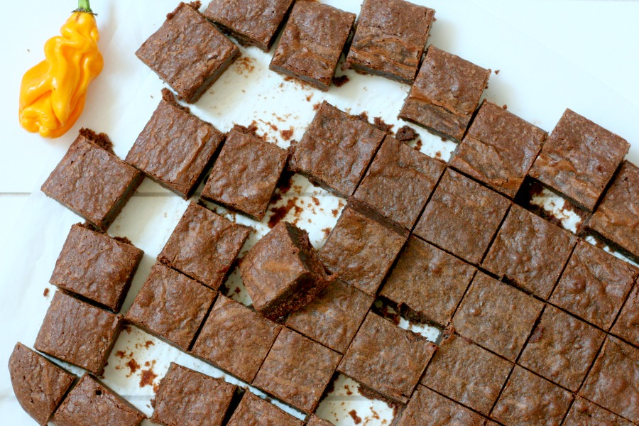 recept brownies met madame jeanette nieuw
