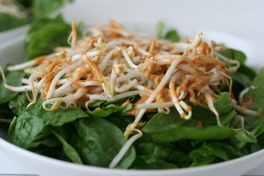 salade met kip, spinazie, tauge, pindasaus